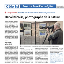 Expositions / Articles Presse